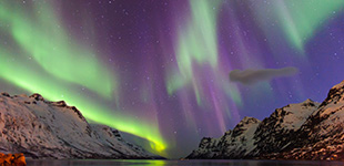 top 10 fjords cruise deals