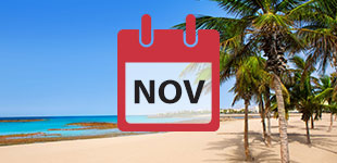 November 2017 Cruises