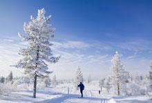 Ski holidays in Levi
